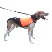 Жилет сигнальный для собаки
